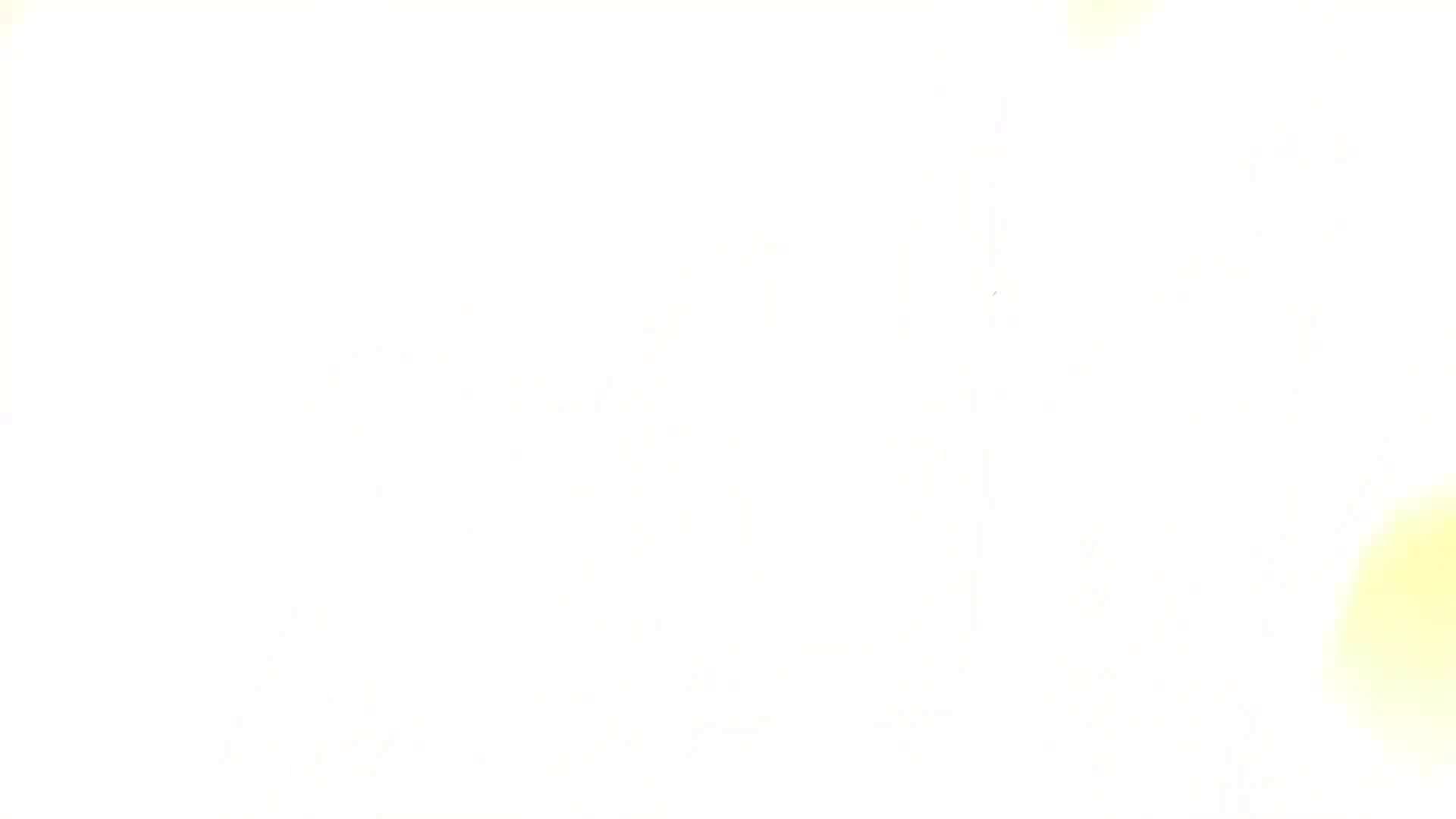 ヤリマンのオマンコ:ヒトニアラズvol.11 紅 崩:怪盗ジョーカー