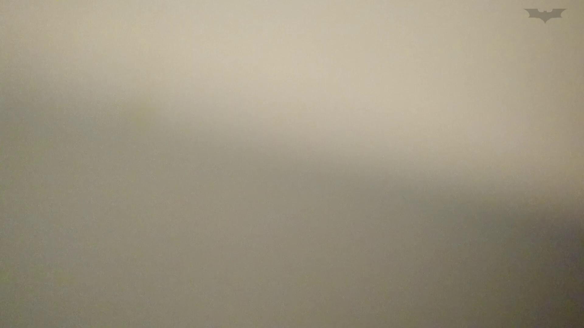 ヤリマンのオマンコ:化粧室絵巻 ショッピングモール編 VOL.23 若いギャルが登場!:怪盗ジョーカー
