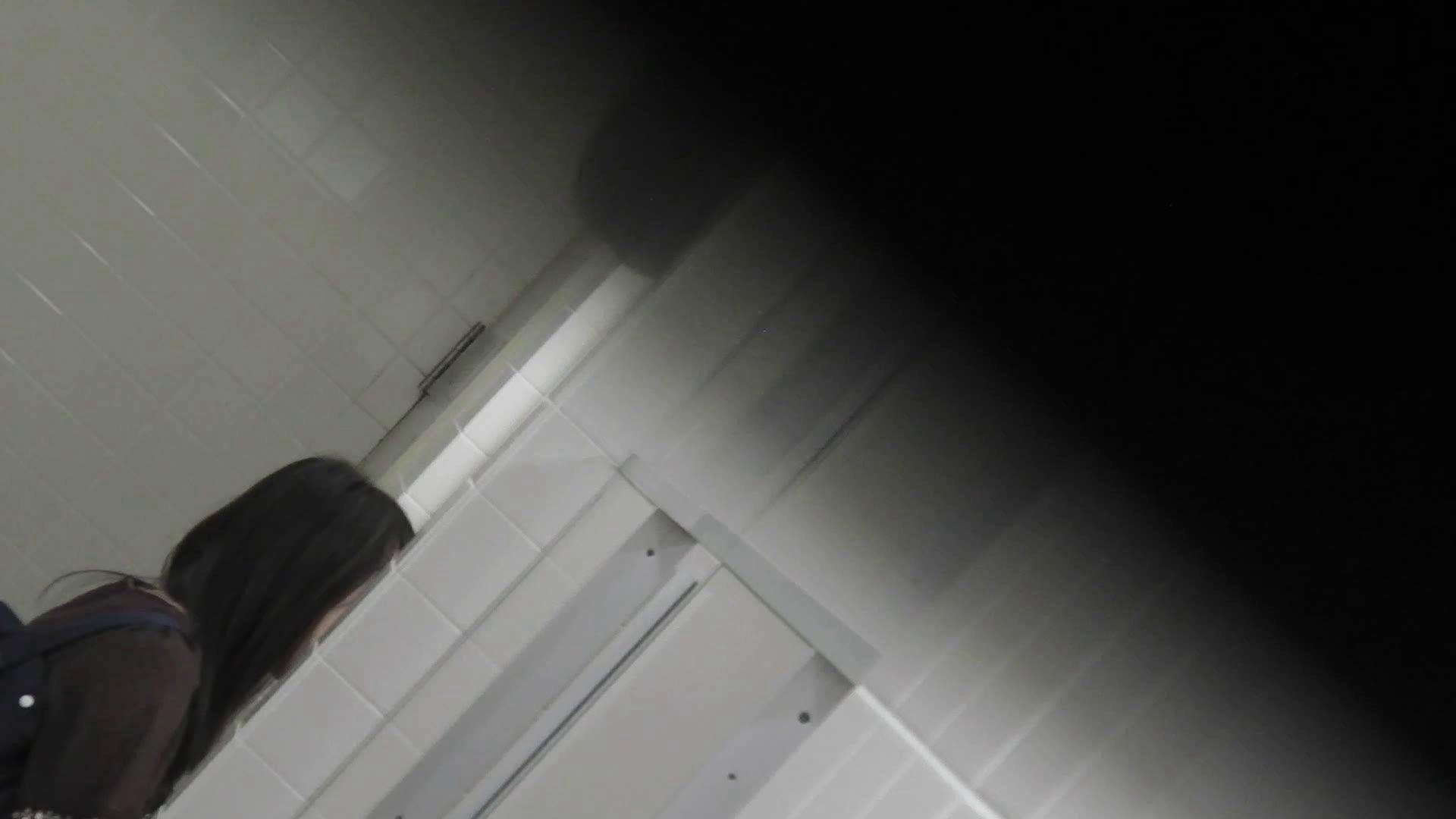 ヤリマンのオマンコ:洗面所特攻隊 vol.001 清楚な美脚さん:怪盗ジョーカー