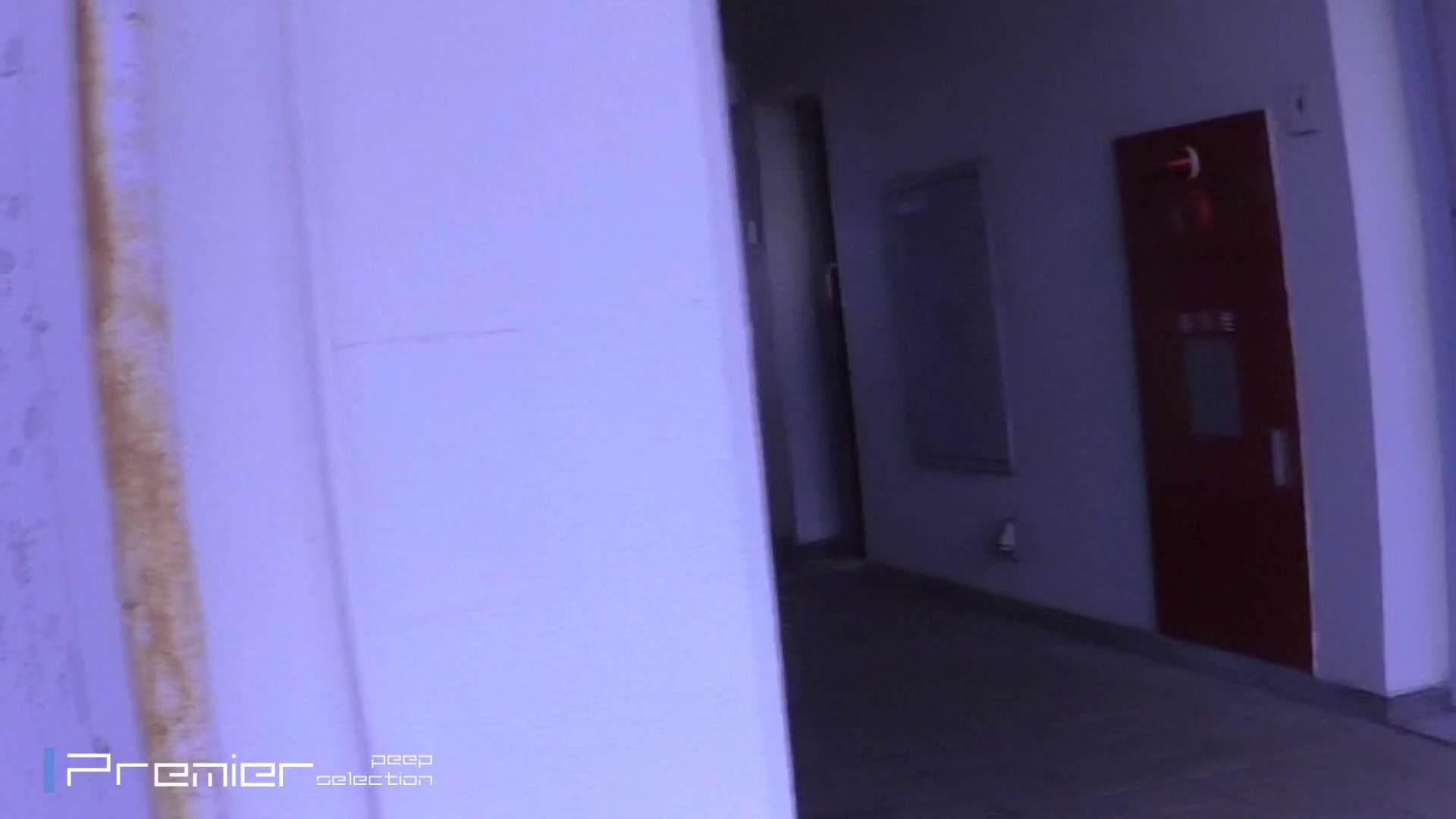 ヤリマンのオマンコ:FHD激カワ!激やば! 復讐のトイレ盗撮 Vol.03:怪盗ジョーカー