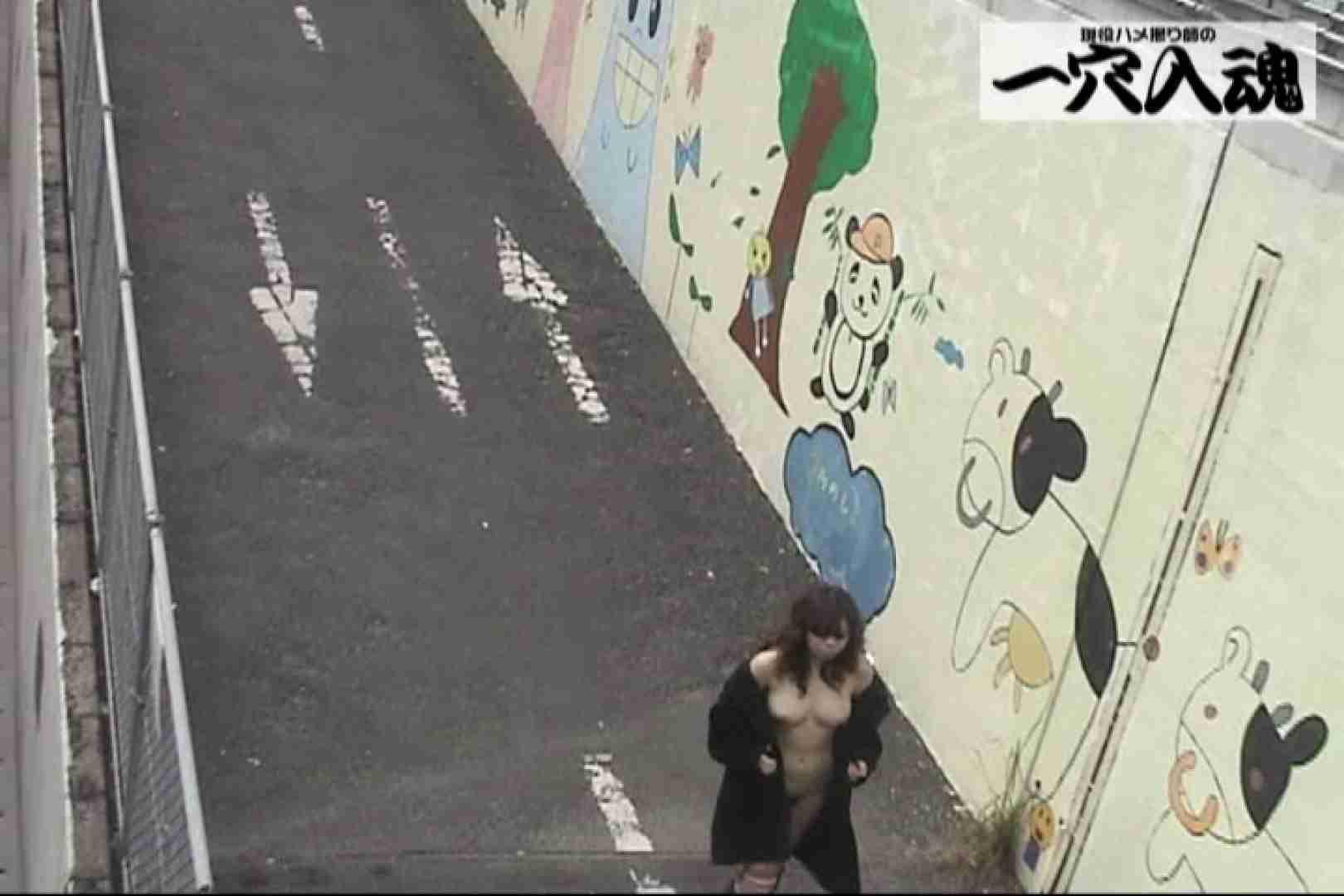 一穴入魂 野外露出撮影編 野外 われめAV動画紹介 106pic 59