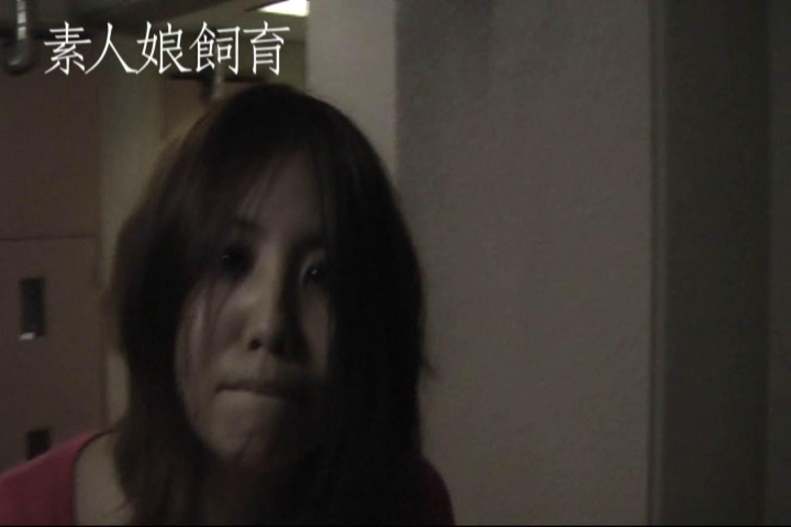 素人嬢飼育~お前の餌は他人棒~野外全裸オナニ- 一般投稿 セックス無修正動画無料 79pic 2