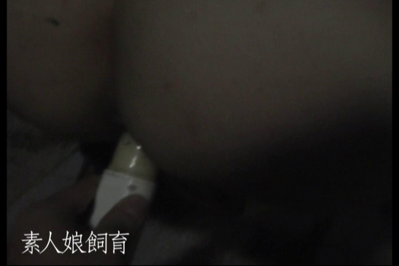 素人娘飼育~お前の餌は他人棒~公園でバイブとお漏らし バイブプレイ 盗み撮り動画 71pic 27