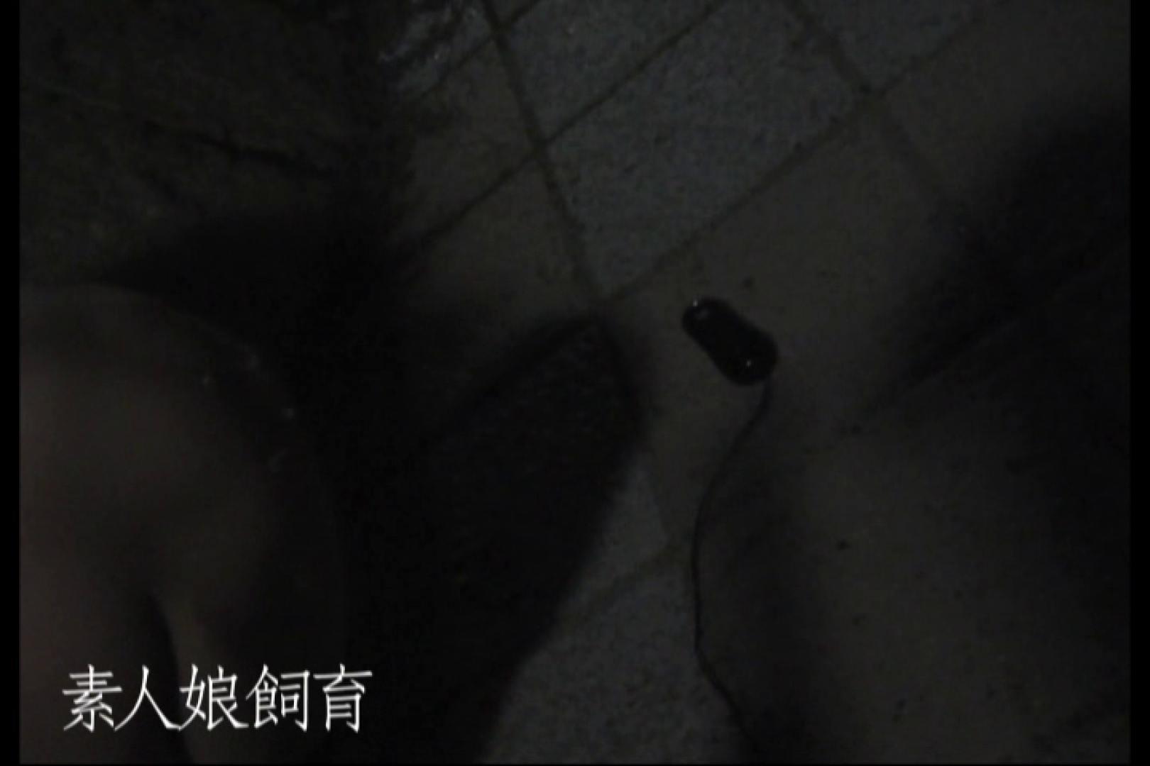 素人娘飼育~お前の餌は他人棒~公園でバイブとお漏らし バイブプレイ 盗み撮り動画 71pic 32
