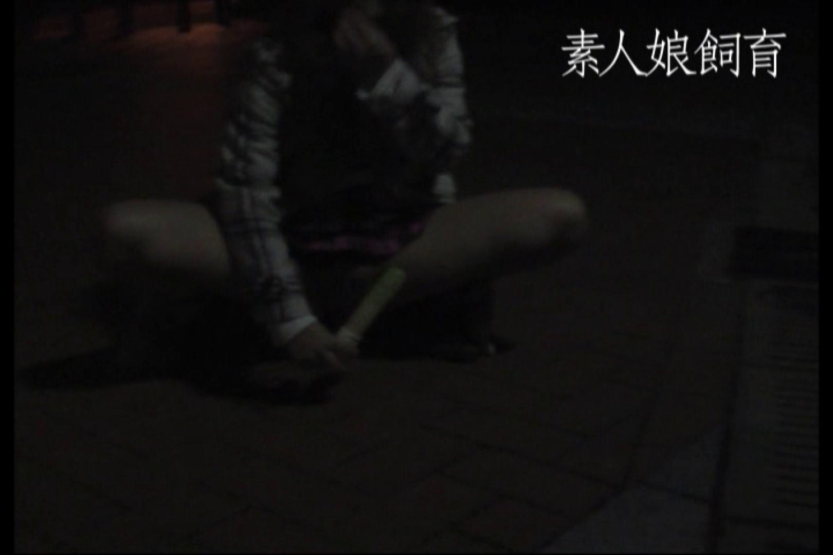 素人娘飼育~お前の餌は他人棒~公園でバイブとお漏らし 野外 アダルト動画キャプチャ 71pic 59