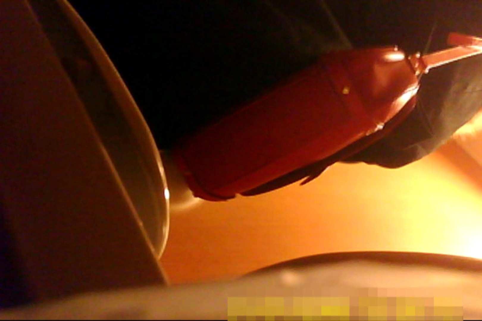 魅惑の化粧室~禁断のプライベート空間~vol.7 プライベート  79pic 30