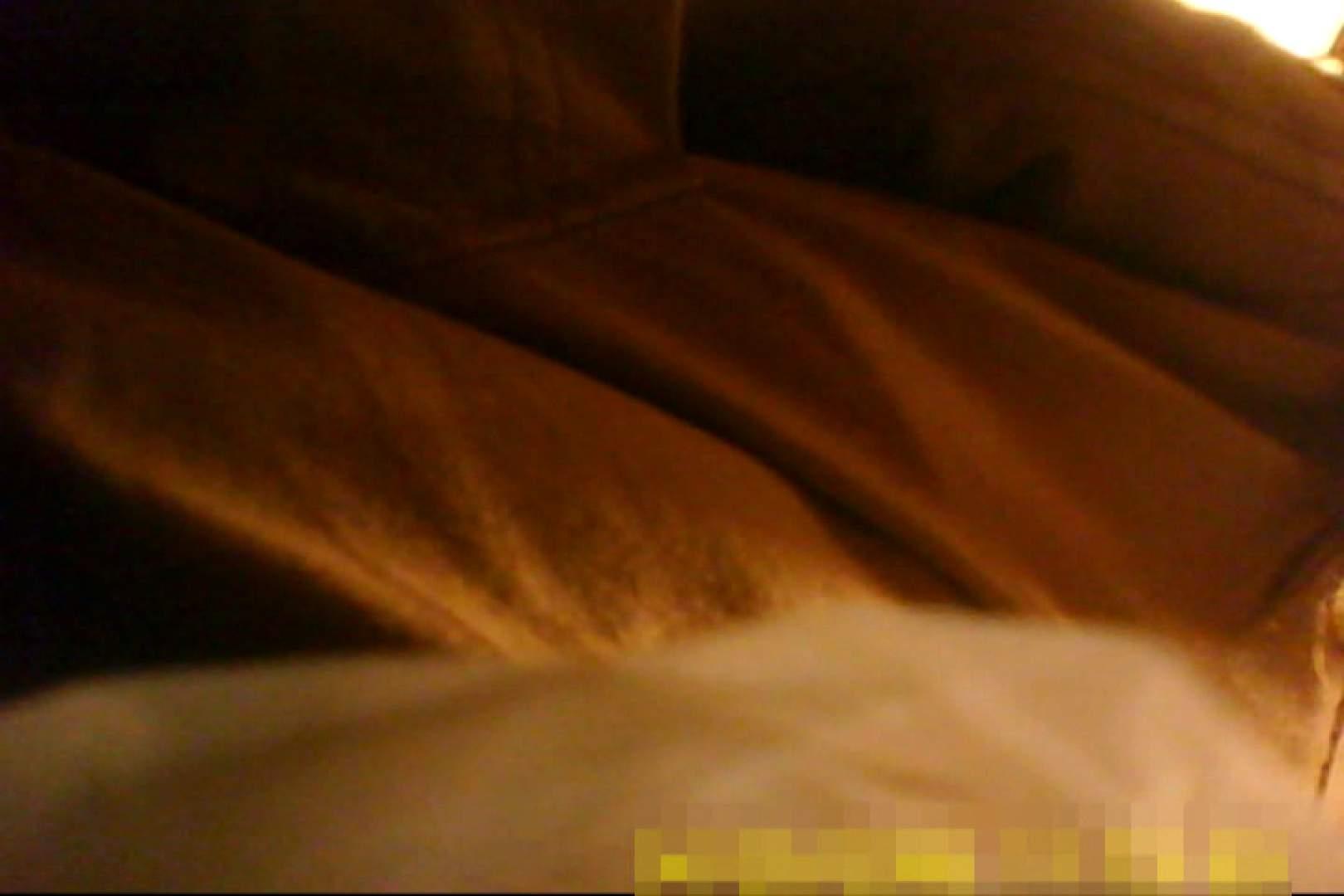 魅惑の化粧室~禁断のプライベート空間~vol.8 熟女のエッチ | プライベート  63pic 45
