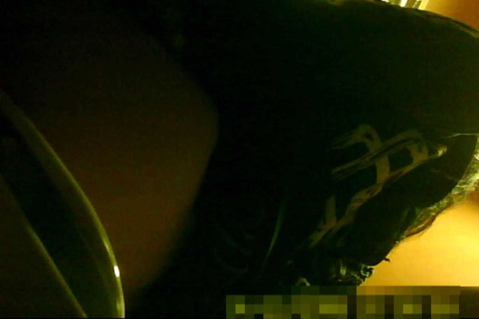 魅惑の化粧室~禁断のプライベート空間~13 プライベート  71pic 60