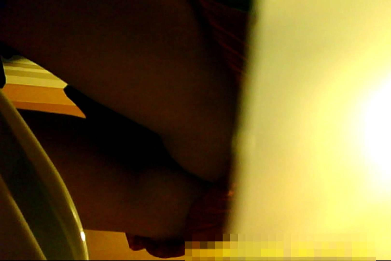魅惑の化粧室~禁断のプライベート空間~30 洗面所 おまんこ動画流出 74pic 5