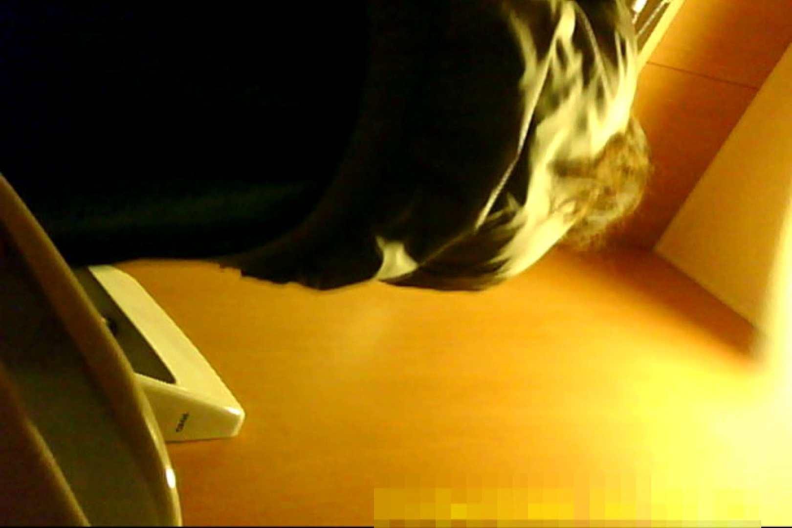 魅惑の化粧室~禁断のプライベート空間~30 お姉さんのエッチ  74pic 48