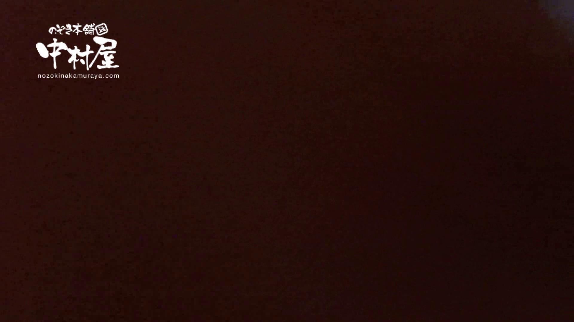 ヤリマンのオマンコ:鬼畜 vol.02 もうやめて! 前編:ピープフォックス(盗撮狐)