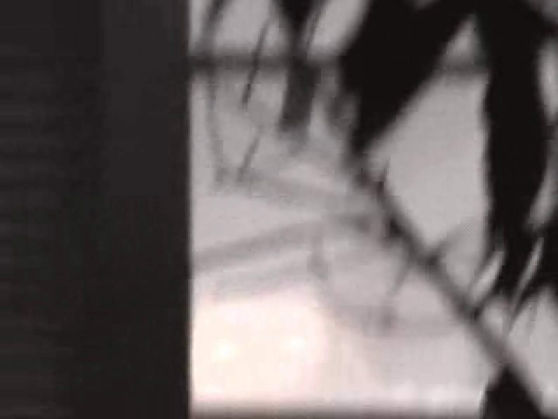 ヤリマンのオマンコ:乙女達の楽園No.3:ピープフォックス(盗撮狐)