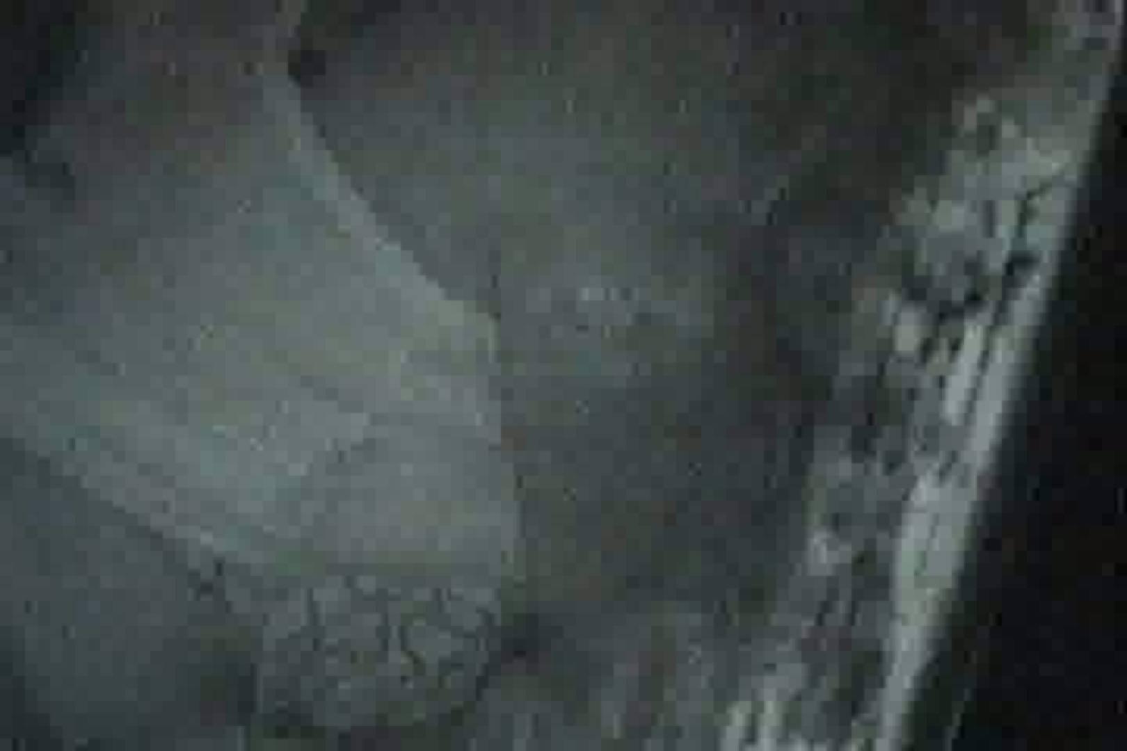 ヤリマンのオマンコ:充血監督の深夜の運動会Vol.17:ピープフォックス(盗撮狐)