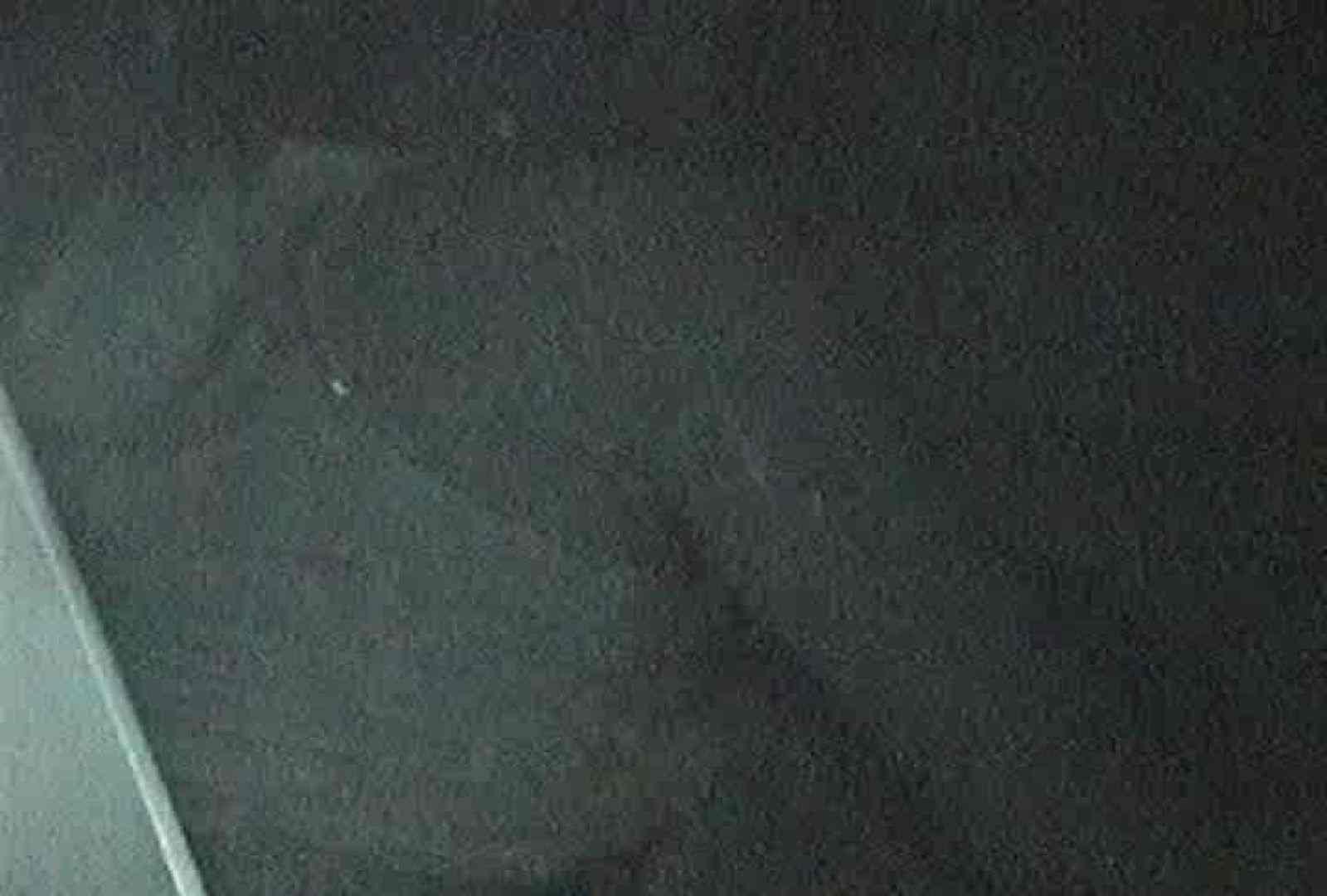 ヤリマンのオマンコ:充血監督の深夜の運動会Vol.67:ピープフォックス(盗撮狐)