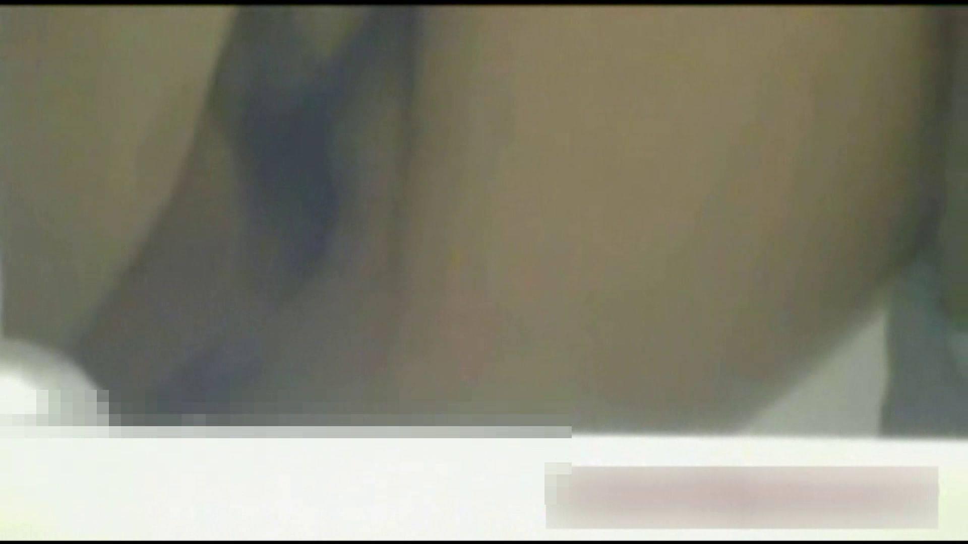 ヤリマンのオマンコ:洗面所で暗躍する撮師たちの潜入記Vol.11:ピープフォックス(盗撮狐)